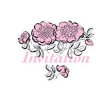 Rosy peony floral sketch. spring flower vector illustration. bla Royalty Free Stock Images