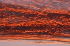 Rosy sky Stock Photo