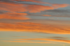 Rosy sunset sky and clouds. In edmonton, alberta, canada Royalty Free Stock Photo