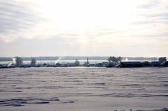 Rosyjscy drzewa w zima widoku od daleko zdjęcia stock