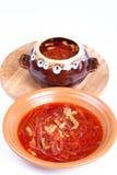 Rosyjska borscht polewka w pucharze i garnku na lekkim tle Zdjęcie Royalty Free