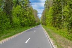 Rosyjska droga w nigdzie Obraz Royalty Free