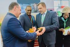 Rosyjska przemysłowa powystawowa Złota jesień Obrazy Royalty Free