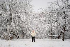rosyjska zima fotografia stock