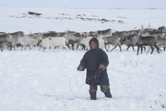 Rosyjski Arktyczny aborygen! Fotografia Royalty Free