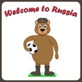 Rosyjski niedźwiedź w nakrętce z nausznikami z fo i, valenoks ilustracji