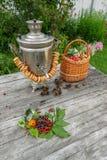 Rosyjski samowar na nieociosanym drewnianym stole z jagodami i kwiatami obrazy royalty free