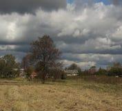 Rosyjski wioska krajobraz Zdjęcia Royalty Free