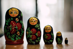 Rosyjskie lale Zdjęcie Stock