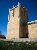 Roszuje przy Torrelobaton, Valladolid, Castilla y Leon, Hiszpania zdjęcia royalty free