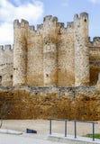 Roszuje przy Walencja de Don Juan, Castilla y Leon Fotografia Stock