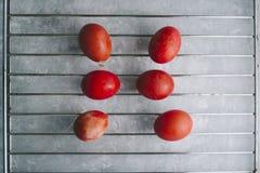 Rot färbte Ostereier eingestellt Stockfotos
