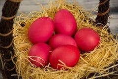 Rot farbige Ostereier Stockfotos