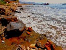 Rot, Farbsteine auf dem wilden Truthahn setzen im Herbst auf den Strand Lizenzfreie Stockfotografie