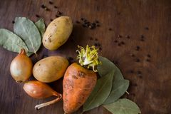 Rot fresh vegetables on the table. Vegetables on the table carrot onion potato near spices of black pepper and bay leaf on the wooden background Stock Images