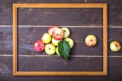 Rot-gelbe Saisonäpfel mit Blatt im Holzrahmen auf der Rückseite Stockbilder