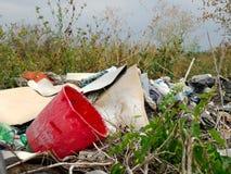 Rot gesträubt in einer Müllgrube stockfoto