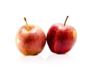 Rot mit zwei Äpfeln Stockfoto