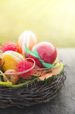 Rot orange aster eggs with lace trimmings in bird nest in sunshine handmade idea Royalty Free Stock Image