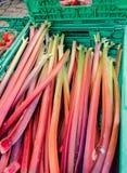 Rot pirscht Sellerie für Verkauf am lokalen Straßenmarkt an lizenzfreie stockfotos