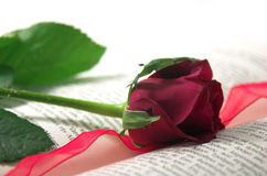 Rot rosafarben und Buch stockbild