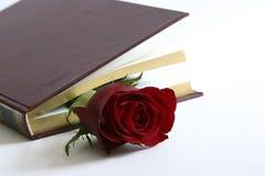Rot stieg in ein Buch Stockfotos