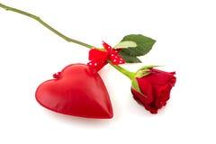 Rot stieg für Liebe Stockbild