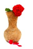 Rot stieg in Vase Lizenzfreie Stockbilder