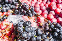 Rot und blaue Trauben in einem Paris-Markt lizenzfreies stockbild