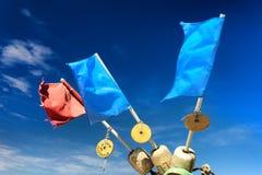 Rot und blauer Sumpf-Schwertlilien auf Flossfischernetzen gegen den Himmel Stockfoto