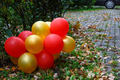 Rot und die Goldballone, die auf dem Weg im Herbst liegen, parken nach Lizenzfreie Stockfotos