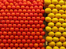 Rot und Gelb Lizenzfreies Stockfoto