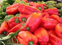 Rot und grüne Paprikas stockfoto
