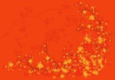 Rot und Orange färbt Efeublattnahaufnahme Lizenzfreies Stockbild