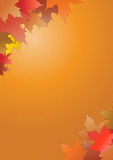 Rot und Orange färbt Efeublattnahaufnahme Lizenzfreie Stockfotografie