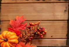 Rot und Orange färbt Efeublattnahaufnahme Stockbild