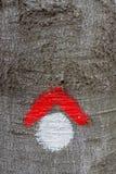 Rot und Whit wandern das Wegsymbol, das auf Baumrinde gemalt wird Stockfotos