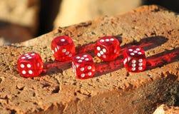 Rot würfelt Stockbild