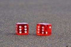 Rot zwei würfelt Lizenzfreies Stockfoto