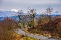 Rotação da estrada asfaltada através dos montes florestados fotos de stock