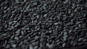 Rotação de sementes de sésamo pretas, close-up video estoque