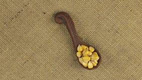Rotação de uma colher da argila com grão do milho, fundo para o projeto vídeos de arquivo