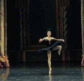 A rotação do cerimônia-bailado adulto O Lago das Cisnes do príncipe preto da cisne- fotografia de stock