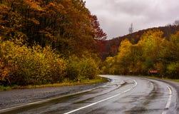Rotação na estrada molhada através da floresta no outono imagem de stock