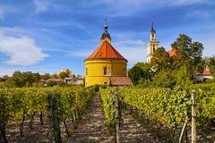 Rota Carpathian pequena do vinho fotografia de stock