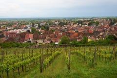 Rota do vinho do curso em França Fotos de Stock
