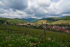 Rota do vinho do curso em França Vins do DES da rota do La Fotografia de Stock