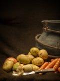 rota veggiesvintern Arkivfoton