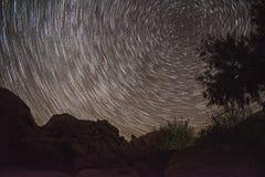 Rotación de las estrellas - árbol de Josuha fotos de archivo libres de regalías