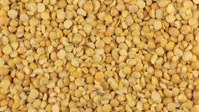 Rotación lenta del montón de los granos secos de los guisantes almacen de video